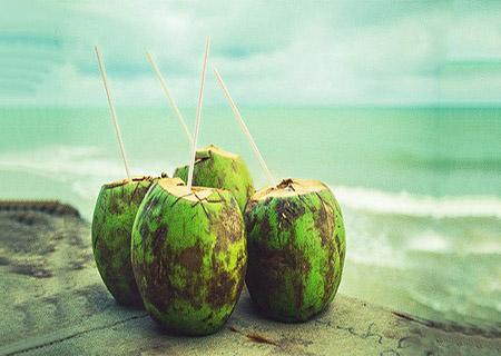 Người bị trĩ không nên uống nước dừa